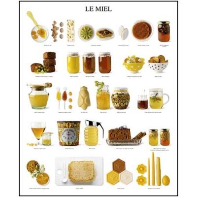 Le miel, Atelier Nouvelles Images, affiche 40x50 cm