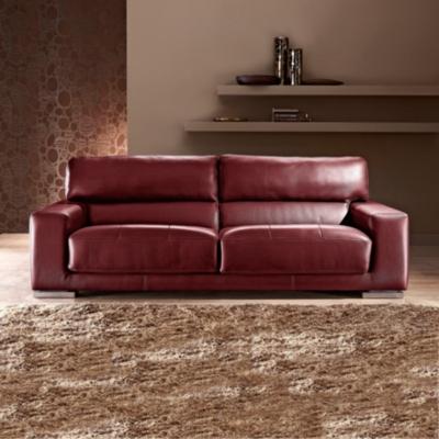 canap s cuir. Black Bedroom Furniture Sets. Home Design Ideas