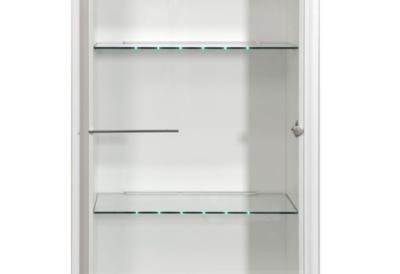Option éclairage LED pour vitrine1 porte Shine pour 79€