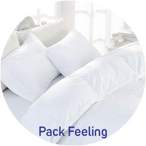 Pack (pour literie 1 pla ce) pour 145€