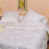 Couette Phytopure REVANCE, 4 saisons