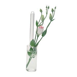 Vase suspendu en verre transparent MINI