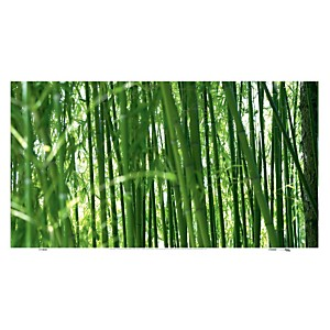 Bambou (Cédric Porchez)