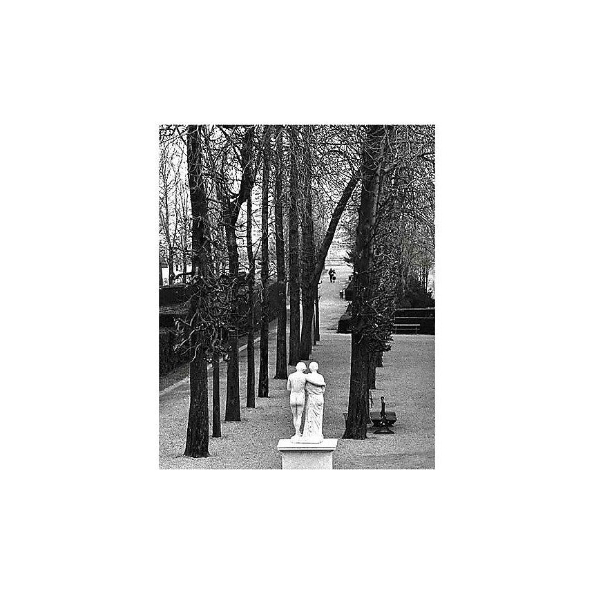Parc de Saint-Cloud, 1981 , Edouard BOUBAT (1923-1999), affiche 24x30 cm