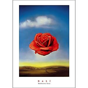La Rose Méditative, Salvador DALI (1904-1989), affiche 50x70 cm