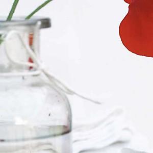 Variation en blanc, Amélie VUILLON, affiche 30x40 cm