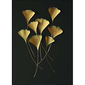 Feuilles de ginkgo, Paul TAYLOR, affiche 50x70 cm