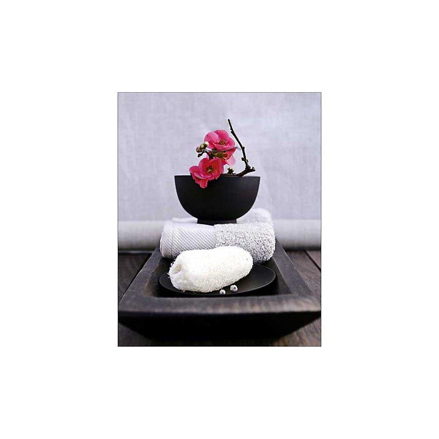 Ambiance Japon, Amélie VUILLON, affiche 40x50 cm
