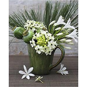 Fleurs en vase, Catherine BEYLER, affiche 40x50 cm