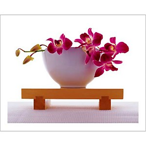 Orchidée rose dans un bol blanc, Anonyme, affiche 40x50 cm