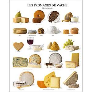 Les fromages de vache - Maison Androuet, maître fromager depuis 1909 , Atelier Nouvelles Images, affiche 40x50 cm