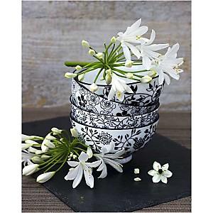 Fleurs sur bols, Catherine BEYLER, affiche 40x50 cm