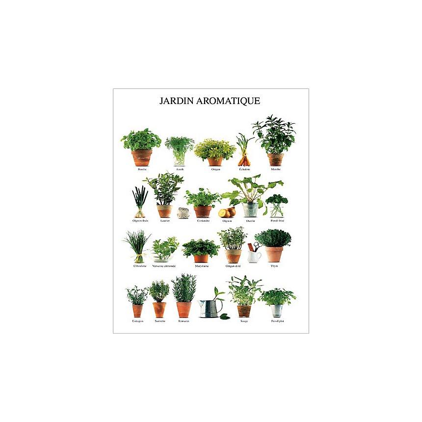 Jardin aromatique, Atelier Nouvelles Images, affiche 40x50 cm