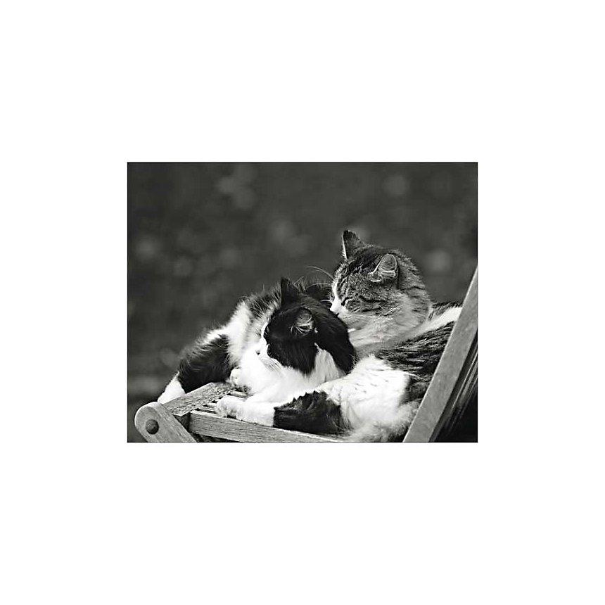 Petite sieste au soleil, Maurice SUBERVIE, affiche 40x50 cm