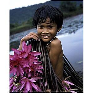 Enfant cambodgien récoltant des nénuphars, Russel YOUNG, affiche 24x30 cm