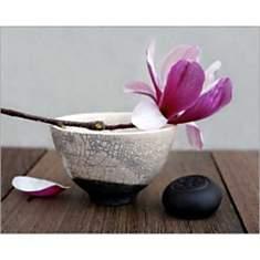 Magnolia et bol / Magnolia and bowl / Ma...