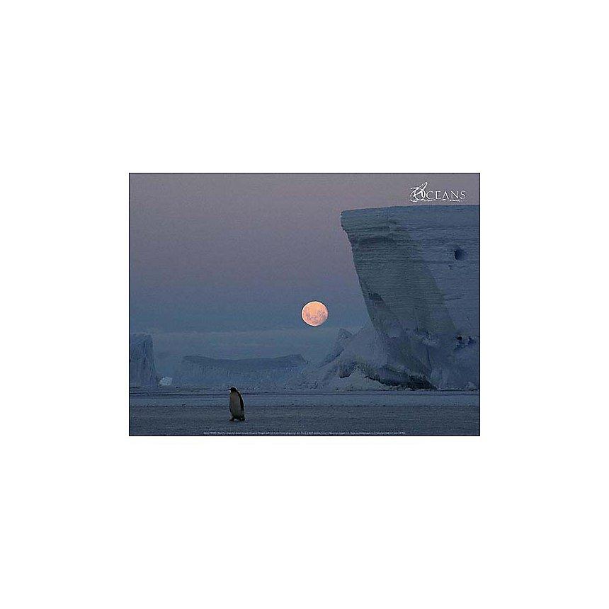 Manchot empereur devant la lune, Katell PIERRE, affiche 30x40 cm