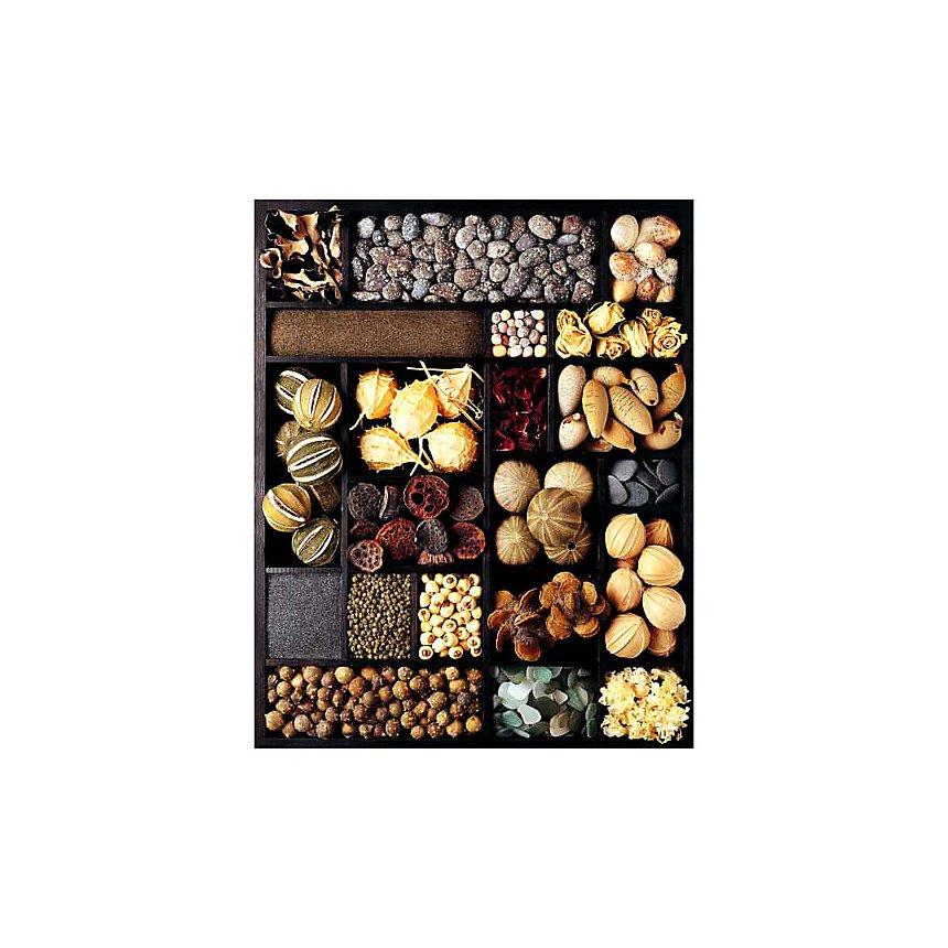 Graines, Atelier Nouvelles Images, affiche 40x50 cm