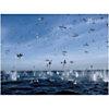 Fous du Cap plongeant sur un banc de sardines, Afrique du Sud, Mathieu SIMONET, affiche 30x40 cm
