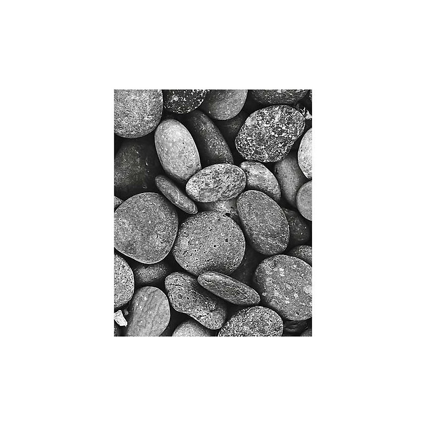 Les galets, BOTANICA, affiche 24x30 cm
