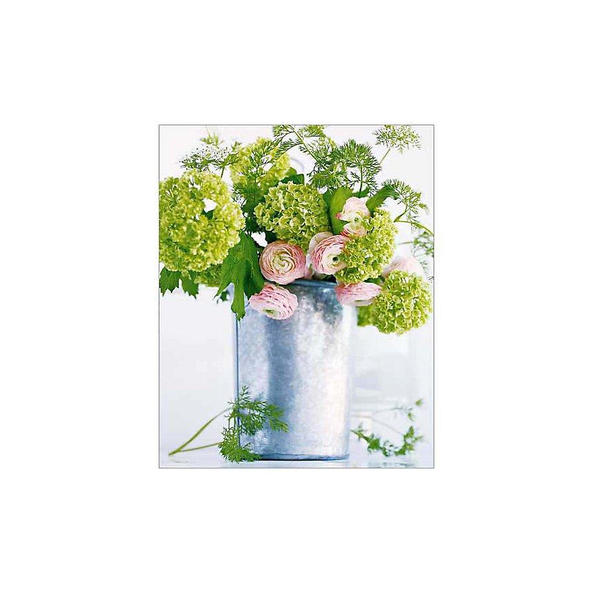 Vert anis, Amélie VUILLON, affiche 24x30 cm