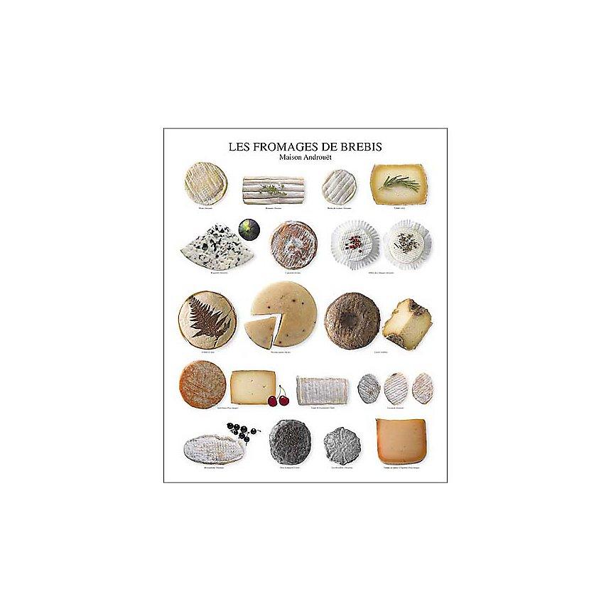 Les fromages de brebis, Maison Androuet, Atelier Nouvelles Images, affiche 40x50 cm
