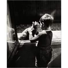 Le chat de la concierge, Willy RONIS (19...