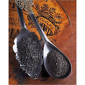 Deux thés de Ceylan, Christine FLEURENT, affiche 24x30 cm