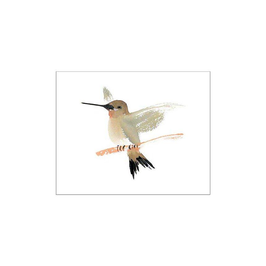 Colibri , Aurore DE LA MORINERIE, affiche 40x50 cm
