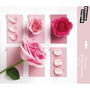 3 Affiches 30 x 30  cm Roses C. SOULAYROL, L. GAILLARD