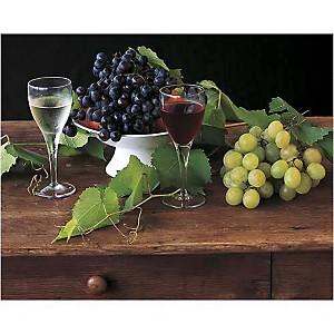 Nature morte aux raisins, Dominique ZINTZMEYER, affiche 24x30 cm