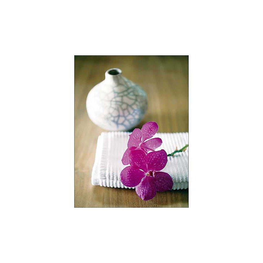 Orchidée rose, Amélie VUILLON, affiche 30x40 cm