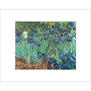 Les iris, Vincent VAN GOGH, affiche 24x30 cm