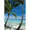 Hamac sur la plage, Anonyme, affiche 50x70 cm
