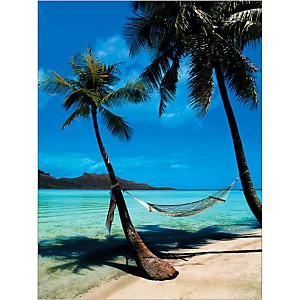 Hamac sur la plage, Bora Bora, Randy FARIS, affiche 30x40 cm
