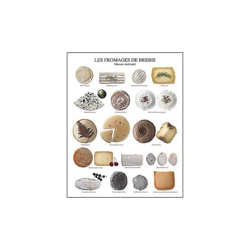 Les fromages de brebis, Maison Androuet - maître fromager depuis 1909, Atelier Nouvelles Images, affiche 24x30 cm