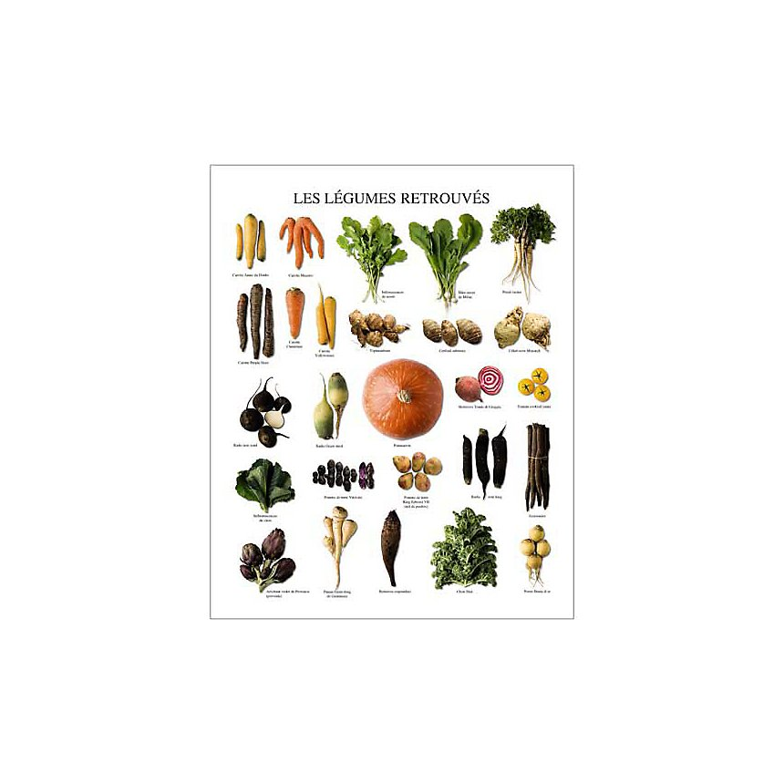 Les légumes retrouvés, Atelier Nouvelles Images, affiche 24x30 cm