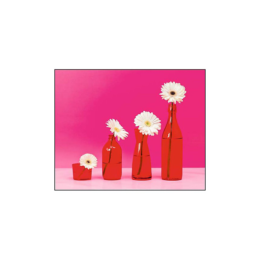 Fleurs pop, Camille SOULAYROL, Frédéric BARON-MORIN, affiche 40x50 cm