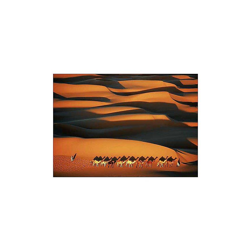 Caravane, Sahara, Altitude - Yann ARTHUS-BERTRAND, affiche 50x70 cm