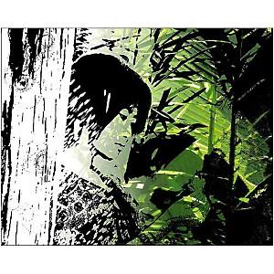 Siam , BILLBEN, affiche 40x50 cm