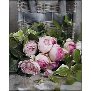 Roses, Catherine BEYLER, affiche 24x30 cm