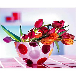 Tulipes et pois, FLORA PRESS, affiche 24x30 cm