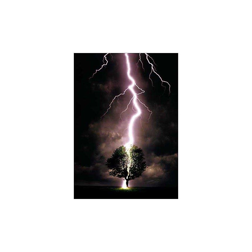 Coup de foudre, Allan DAVEY, affiche 50x70 cm