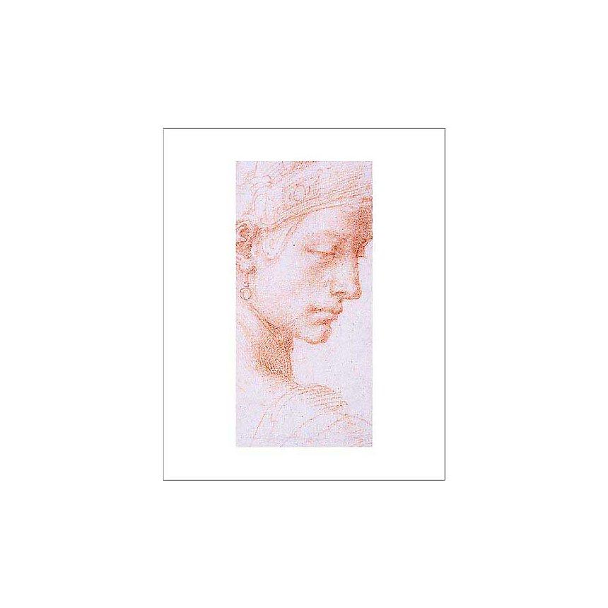 Tête de profil, affiche 40x50 cm