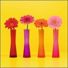Quatre fleurs sur fond jaune, C.SOULAYRO...