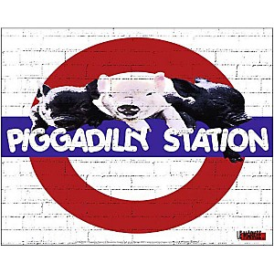 Piggadilly Station , LE MARKEE