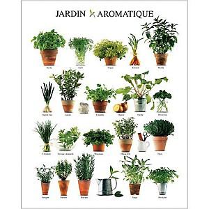 Jardin aromatique, Atelier Nouvelles Images, affiche 24x30 cm