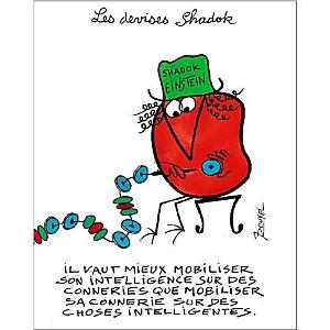 Il vaut mieux mobiliser son intelligence... , Jacques ROUXEL (1931-2004), affiche 24x30 cm