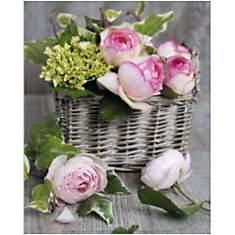 Roses / Rosen , Catherine BEYLER
