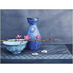 Nature indigo, Amélie VUILLON, affiche 3...